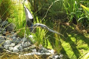 Transistions garden at Ellerslie Show. image: Judy Grindell