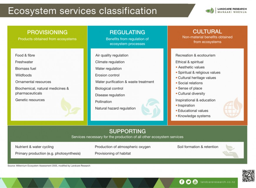 Ecosystem services classification
