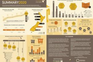 NZ Colony Loss Survey 2020: summary infographic