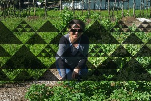 Maori research soil health