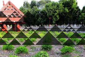 Maori soil health frameworks