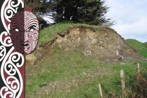 Māori research