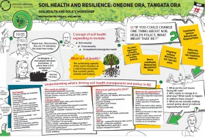 Poster: Soil Health and Resilience - oneone ora tangata ora