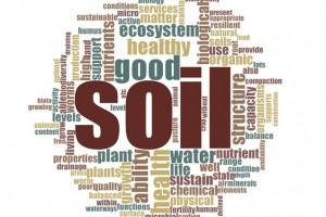 stakeholder views soil health