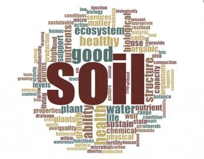 Stakeholder views on soil health