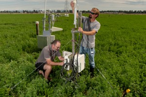 Continuous measurements of water vapour and carbon dioxide exchange at paddock scale above lucerne to determine seasonal and annual ecosystem net water and carbon balances (Bradley White)