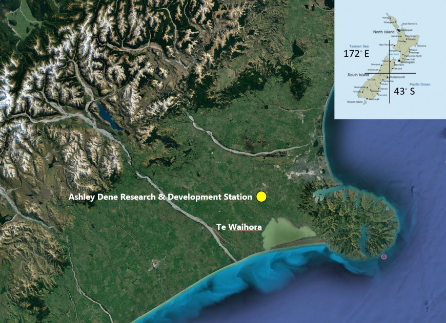 Satellite image of the South Island of New Zealand showing the location of the research site. The image highlights the extensive conversion of dryland farming to intensive irrigated dairy farming on the Canterbury Plains east of the Southern Alps. This illustrates the concept of Ki Uta Ki Tai, (from the mountains to the sea) and the potential flow-on effects of our farming decisions on the consequences of water quality for Te Waihora. (Google Earth)