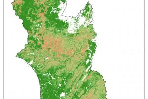 shallow landslide map