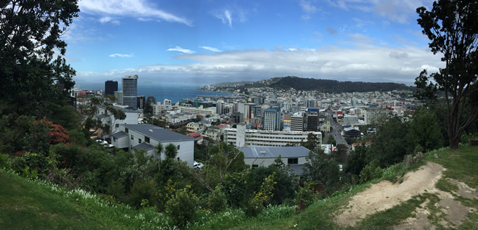 A view of Wellington
