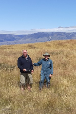 Gavin Loxton (left) and Lindsay Smith (right) at a Canterbury hieracium biocontrol site