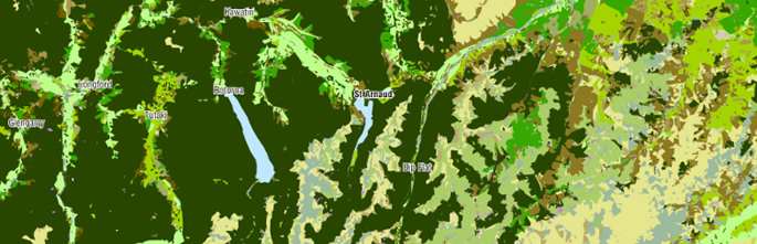 New Zealand's Land Cover Database (LCDB