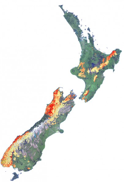 Modern remote sensing techniques allow very high-resolution land surveying. The data in this image show beech forest flowering: red = higher intensity: yellow = lower instensity.