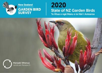 Access State of New Zealand Garden Birds 2020 | Te āhua o ngā manu o te kāri i Aotearoa