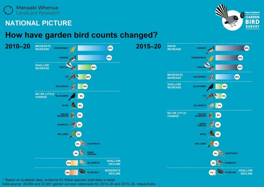 How have garden bird counts changed? 2010-2020