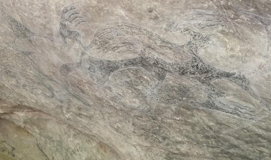 Māori rock art at Ōpihi, South Canterbury