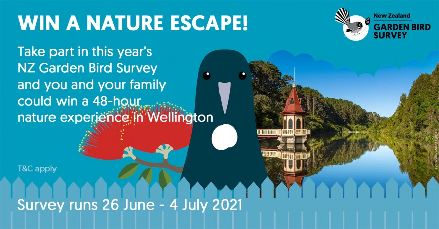 Win a nature escape weekend in Wellington