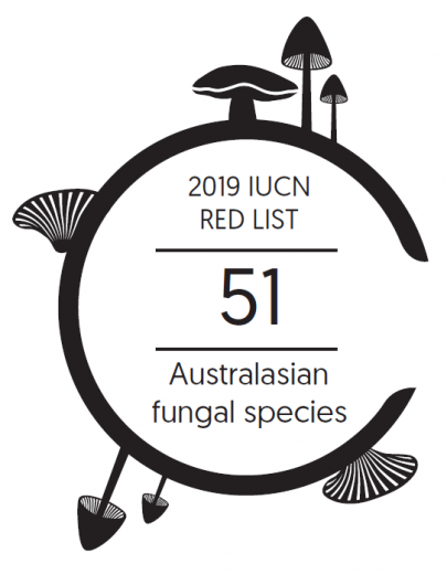 Infographic: 51 Australasian fungal species are on the 2019 IUCN Red List