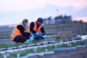 Investigating soil nutrient movement at Ashley Dene
