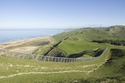 he pest-fenced peninsula Cape Sanctuary in Hawke's Bay is 2,500 ha and has hosted the return of kiwi, toutouwai (robin), tīeke (saddleback), pāteke (brown teal) and tītipounamu (rifleman) among others to this mainland site. Image: Neil Fitzgerald