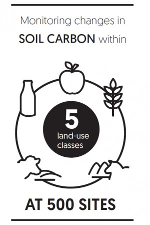 Monitoring changes in soil carbon
