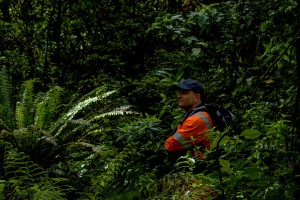 Field technician Scott Bartlam during a field trip to Taranaki where researchers were identifying suitable locations to conduct research for the programme Beyond Myrtle Rust.