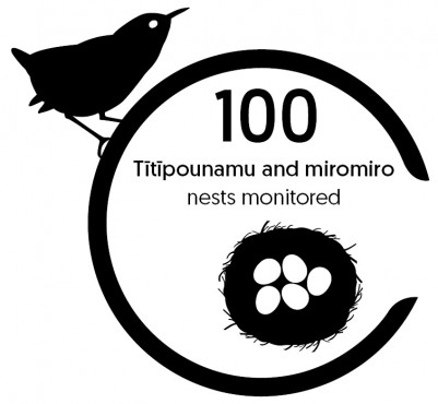 Tītīpounamu and miromiro nests monitored