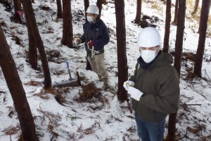 Forest monitoring site - Hugh Smith, front and Prof Yuichi Onda, programme lead, behind.