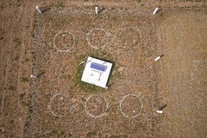 Aerial photographs of lysimeters planted with lucerne under non-irrigated conditions