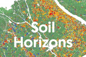 Soil Horizons T