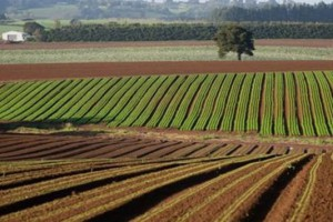 agricultura land at risk