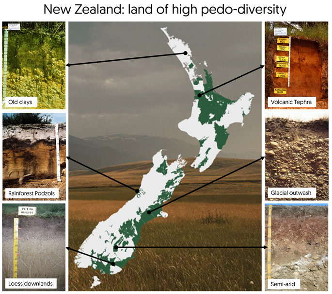 Figure 1 New Zealand is renowned internationally for its high diversity of soil types.