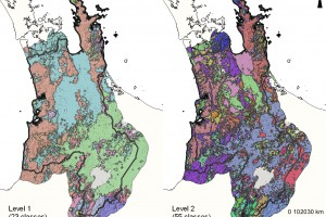 soilscapes Waikato Region