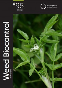 Weed Biocontrol: What's New.  Issue 95.