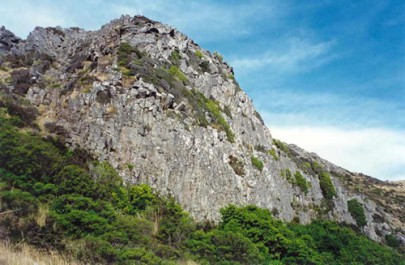 Outcrop on Mt Herbert, Banks Peninsula, Canterbury, with vegetation comprising stunted shrubs, grasses and herbs (Susan Wiser)