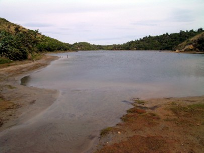 Lake margins at Kaihoka Lakes, Westland (Janet Wilmshurst)