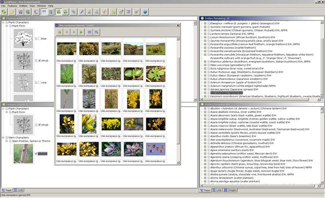 Making identifications screenshot