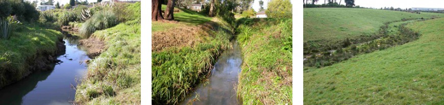 Streams with relatively poor quality invertebrate communities. Left - right: Avondale Stream, Olympic Park, Bishop Stream, Oruarangi mid reaches
